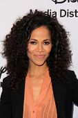 LOS ANGELES - MAY 19:  Sherri Saum at the Disney Media Networks International Upfronts at Walt Disne