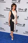 LOS ANGELES - MAY 19:  Anne Sweeney at the Disney Media Networks International Upfronts at Walt Disn