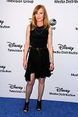 LOS ANGELES - MAY 19:  Marg Helgenberger at the Disney Media Networks International Upfronts at Walt Disney Studios on May 19, 2013 in Burbank, CA