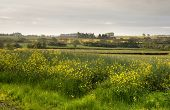 Rural Warwickshire, England