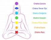 Chakras Woman Description Spanish