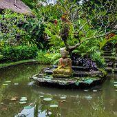 Buddha Statue On A Pond