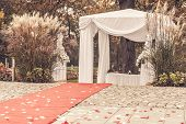 picture of marquee  - path to wedding ceremony marquee with petals vintage picture - JPG