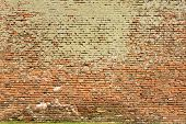 Texture Of Brick Wall Full Of Moss