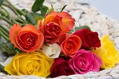 colorful roses lying in a basket