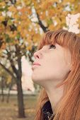 picture of freckle face  - Dreamy red hair girl face with freckles against red autumn foliage - JPG