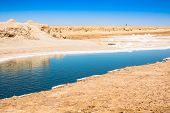 pic of tozeur  - Chott el Djerid salt lake in Tunisia Africa