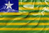 Amazing flag of the State of Piaui , Brazil