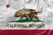 Amazing Flag of the State of California USA