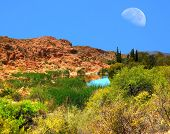Moon And Desert Pond