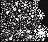 Snowflake Fade