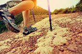 woman hiker hiking on trail