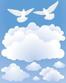 Doves At The Sky
