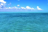 foto of gulf mexico  - ground in mexico froath and blue foam the sea drop sunny day wave - JPG