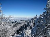 picture of smoky mountain  - Trees covered in snow and ice along the Appalachian Trail in Great Smoky Mountain National Park - JPG
