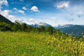 foto of bavarian alps  - Grassy plateau overlooking the Bavarian Alps in the Berchtesgaden National Park  - JPG