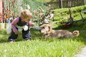 stock photo of baby dog  - blonde baby two years old age approaching crouching to a brown terrier breed dog lying on green grass lawn and looking at girl - JPG
