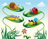 Insect on the leaves. Cartoon and vector illustration, isolated objects