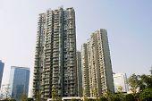 The modern building in shanghai