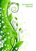 Green floral card