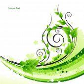 Green fresh background