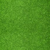 foto of golf  - Beautiful green grass texture from golf course - JPG
