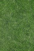 Perfectly cut grass background
