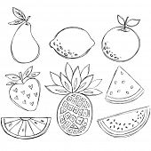 Sketchy Doodle Fruit Vector Illustration