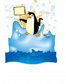 Penguin In Arctic