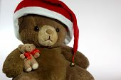 Teddy Bear With Santa Hat And A Small Friend