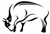 vector de bisonte