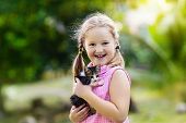 Little Girl Holding Baby Cat. Kids And Pets poster