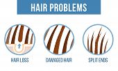 Hair Care.  Common Hair Problems - Split Ends, Damaged Hair, Hair Loss. Vector poster