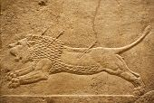 Old assyrian relief of a lion being hunted with arrows