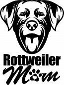 Animal Dog Rottweiler 6Y6 Mom.eps poster
