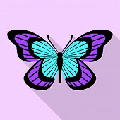 Aqua Purple Butterfly Icon. Flat Illustration Of Aqua Purple Butterfly Icon For Web Design poster