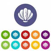 Beautiful Shell Icon. Simple Illustration Of Beautiful Shell Icon For Web poster
