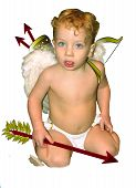 Cupid Looking Straight Forward No Background