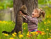 stock photo of pussy  - Kid playing with a cat - JPG