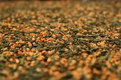 Green Tea - Genmaicha