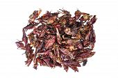 Roasted Grasshoppers