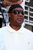 LOS ANGELES - MAY 31:  Stevie Wonder at the David Foster Hollywood Walk of Fame Star Ceremony at the