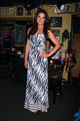 LOS ANGELES - JUN 1:  Nadia Bjorlin at the Judi Evans Celebrates 30 years in Show Business event at