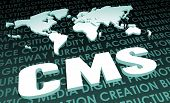 CMS Industry Global Standard on 3D Map