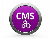 Ícone de CMS