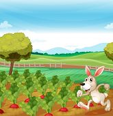 Illustration of a bunny running in the farm