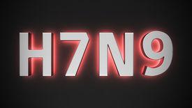 picture of avian flu  - Big metal luminous letters of H7N9 type of avian influenza - JPG
