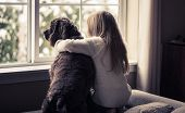 pic of dog-house  - Little girl and her dog looking out the window - JPG