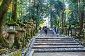 Stair to Kasuga Taisha Shrine in Nara