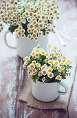 Vintage Enamel Mugs With Chamomile